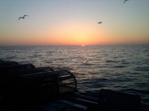 Sunset from lobster fishing boat